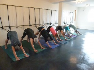 Yogaview: Downward Dog